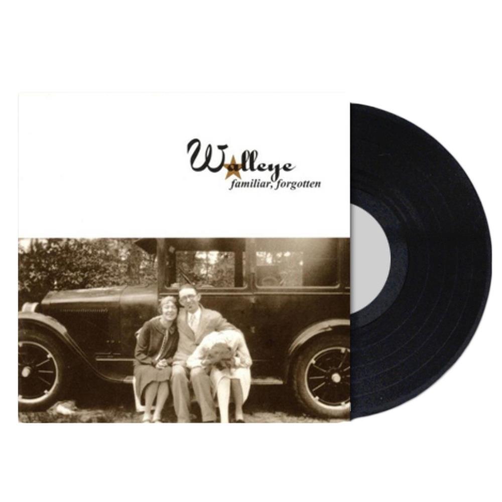Familiar Forgotten Vinyl